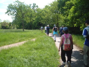 Lewisham Health Walks Pic 2