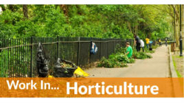 City and Guilds Level 1 in Horticulture Plus Guaranteed interviews