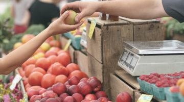 Jellied Eel Article – GCDA Fruit and Veg