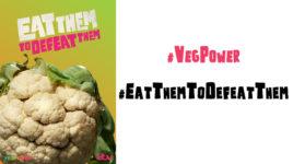 VegPower Cauliflower